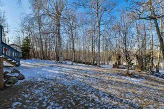 Photo 5: 30 54129 RGE RD 275: Rural Parkland County House for sale : MLS®# E4226059