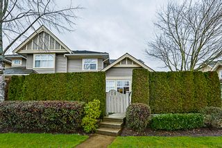 """Photo 51: 16 15450 ROSEMARY HEIGHTS Crescent in Surrey: Morgan Creek Townhouse for sale in """"CARRINGTON"""" (South Surrey White Rock)  : MLS®# R2245684"""
