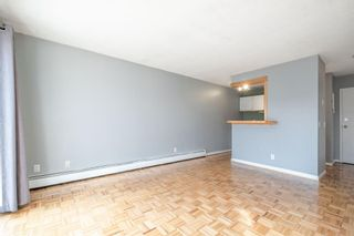 Photo 11: 7 4328 75 Street NW in Calgary: Bowness Apartment for sale : MLS®# A1094944