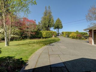 Photo 36: 6749 Welch Rd in : CS Martindale House for sale (Central Saanich)  : MLS®# 875502