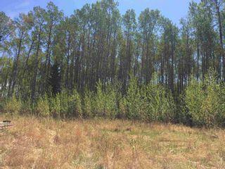 Photo 2: : Rural Lesser Slave River M.D. Rural Land/Vacant Lot for sale : MLS®# E4247783