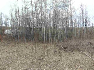 Photo 9: 81 15065 TWP RD 470: Rural Wetaskiwin County Rural Land/Vacant Lot for sale : MLS®# E4240270