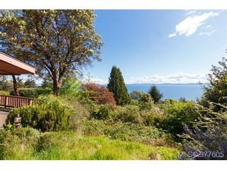 Photo 4: 923 Claremont Ave in VICTORIA: SE Cordova Bay House for sale (Saanich East)  : MLS®# 758129