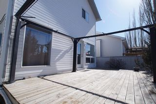 Photo 35: 117 Coverdale Road NE in Calgary: Coventry Hills Detached for sale : MLS®# A1075878
