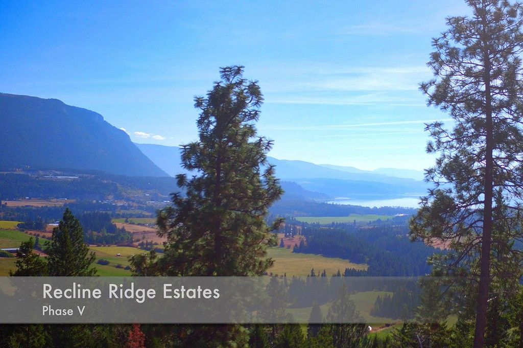 Photo 4: Photos: Lot 17 Recline Ridge Road in Tappen: Land Only for sale : MLS®# 10200571