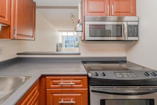 """Photo 14: 304 7471 BLUNDELL Road in Richmond: Brighouse South Condo for sale in """"CANTERBURY COURT"""" : MLS®# R2625296"""