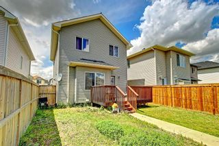 Photo 46: 68 TARALAKE Street NE in Calgary: Taradale Detached for sale : MLS®# C4256215