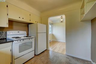 Photo 6: 4051 Hodgson Pl in VICTORIA: SE Lake Hill House for sale (Saanich East)  : MLS®# 842061
