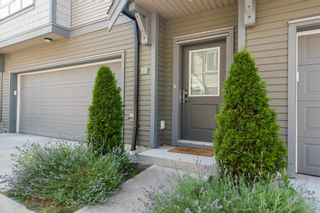 """Photo 40: 77 8138 204 Street in Langley: Willoughby Heights Townhouse for sale in """"Ashbury & Oak"""" : MLS®# R2601036"""