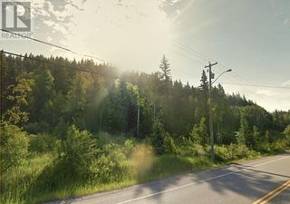 Photo 2: 2100 NORTH NECHAKO ROAD in Prince George: Vacant Land for sale : MLS®# R2555545
