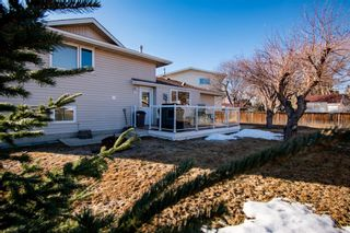 Photo 39: 132 Silver Springs Green NW in Calgary: Silver Springs Detached for sale : MLS®# A1082395