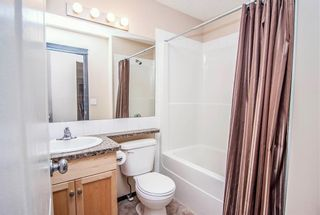 Photo 18: 259 CRANBERRY Place SE in Calgary: Cranston Detached for sale : MLS®# C4214402