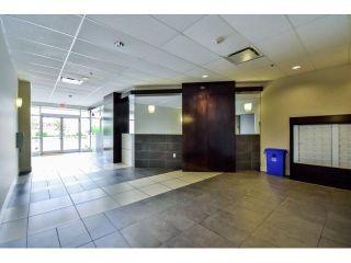 "Photo 13: 412 7445 120TH Street in Delta: Scottsdale Condo for sale in ""Trend"" (N. Delta)  : MLS®# R2235091"