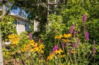 Photo 29: 1 CAPE VIEW Drive in Wolfville: 404-Kings County Residential for sale (Annapolis Valley)  : MLS®# 201921211