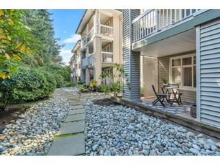 """Photo 13: 117 22022 49 Avenue in Langley: Murrayville Condo for sale in """"Murray Green"""" : MLS®# R2620462"""