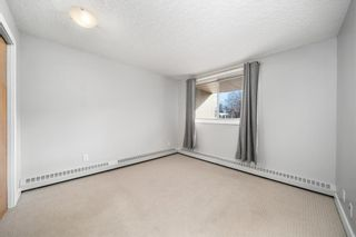 Photo 14: 212 317 19 Avenue in Calgary: Mission Apartment for sale : MLS®# A1080613
