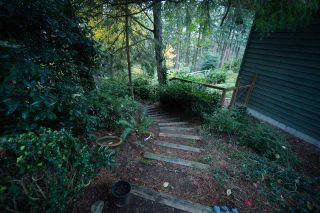 Photo 20: 10696 SANTA MONICA Drive in Delta: Nordel House for sale (N. Delta)  : MLS®# R2425540