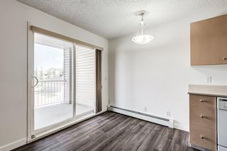 Photo 7: 3209 1620 70 Street SE in Calgary: Applewood Park Apartment for sale : MLS®# A1116068