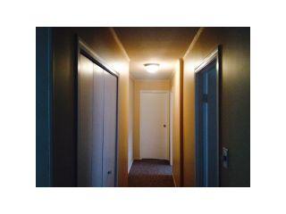 Photo 5: 20258 OSPRING Street in Maple Ridge: Southwest Maple Ridge House for sale : MLS®# V1064022