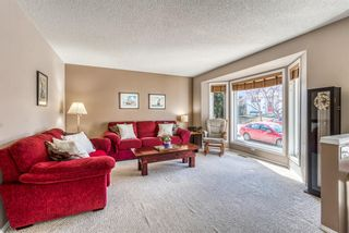 Photo 10: 23 River Rock Circle SE in Calgary: Riverbend Detached for sale : MLS®# A1089273