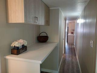 Photo 14: : Calmar House for sale : MLS®# E4223290