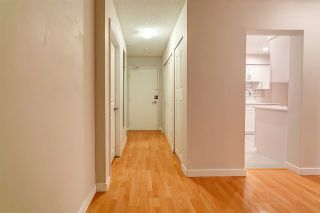 Photo 5: 203 6105 KINGSWAY in Burnaby: Highgate Condo for sale (Burnaby South)  : MLS®# R2224311