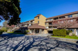 "Photo 1: 322 8120 COLONIAL Drive in Richmond: Boyd Park Condo for sale in ""Cherry Tree Place"" : MLS®# R2568635"