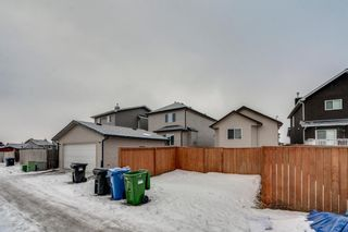 Photo 28: 399 Saddlebrook Way in Calgary: Saddle Ridge Detached for sale : MLS®# A1065807