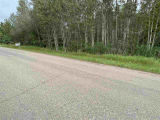 Photo 9: King St & 2nd Ave: Rural Parkland County Rural Land/Vacant Lot for sale : MLS®# E4171458