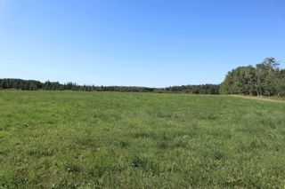 Photo 4: Hwy 622 RR 15: Rural Leduc County Rural Land/Vacant Lot for sale : MLS®# E4261453