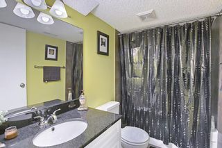 Photo 37: 800 Acadia Drive SE in Calgary: Maple Ridge Detached for sale : MLS®# A1091895