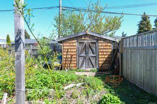 Photo 36: 2106 McKenzie Ave in : CV Comox (Town of) Full Duplex for sale (Comox Valley)  : MLS®# 874890