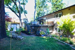 Photo 4: 3640 Blenkinsop Rd in : SE Maplewood House for sale (Saanich East)  : MLS®# 879297