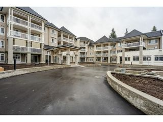 "Photo 1: 405 22022 49 Avenue in Langley: Murrayville Condo for sale in ""Murray Green"" : MLS®# R2533528"