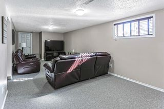 Photo 26: 9737 Elbow Drive SW in Calgary: Haysboro Detached for sale : MLS®# A1088703