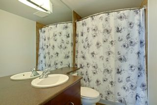 Photo 19: 1417 8710 HORTON Road SW in Calgary: Haysboro Apartment for sale : MLS®# A1091415