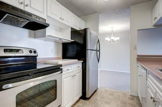 Photo 9: 208 540 18 Avenue SW in Calgary: Cliff Bungalow Apartment for sale : MLS®# A1046007