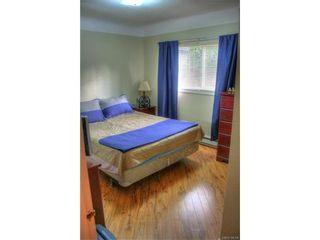 Photo 7: 1029-1031 Colville Rd in VICTORIA: Es Rockheights Full Duplex for sale (Esquimalt)  : MLS®# 749288