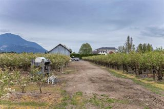 Photo 37: 36509 LOUGHEED Highway in Mission: Dewdney Deroche House for sale : MLS®# R2572923