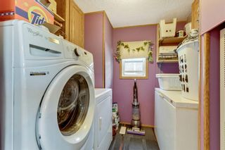 Photo 17: 249 Erin Woods Circle SE in Calgary: Erin Woods Detached for sale : MLS®# A1147067
