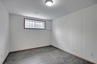 Photo 25: 4527 26 Avenue SE in Calgary: Dover Semi Detached for sale : MLS®# A1105139