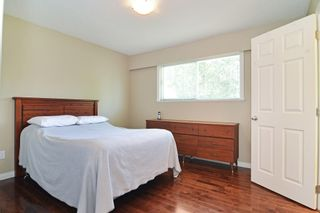 Photo 10: 11781 GEE Street in Maple Ridge: East Central House for sale : MLS®# R2602105