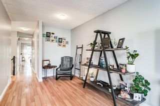 Photo 16: 508 Mckinnon Drive NE in Calgary: Mayland Heights Detached for sale : MLS®# A1154496