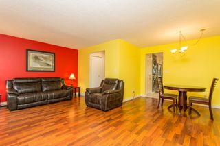 Photo 11: 104 3031 WILLIAMS ROAD in Richmond: Seafair Townhouse for sale : MLS®# R2513589