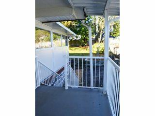 Photo 5: 13157 99TH AV in Surrey: Cedar Hills House for sale (North Surrey)  : MLS®# F1427628