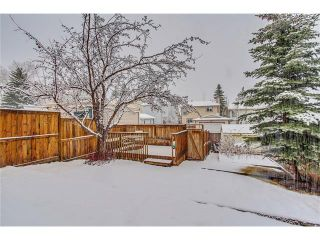 Photo 42: SOLD in 1 Day - Beautiful Strathcona Home By Steven Hill of Sotheby's International Realty