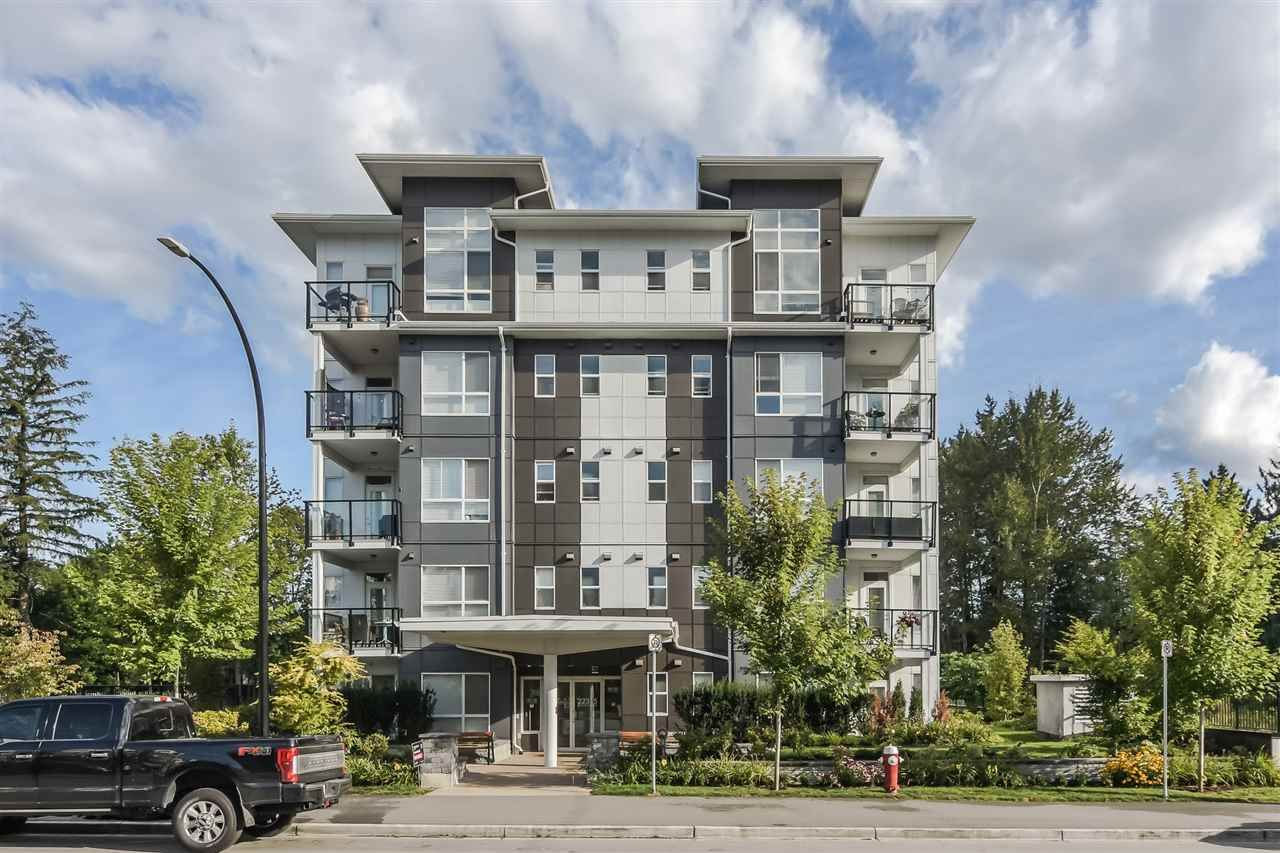 "Main Photo: 109 22315 122 Avenue in Maple Ridge: West Central Condo for sale in ""The Emerson"" : MLS®# R2550101"
