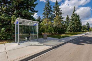 Photo 48: 113 7327 118 Street in Edmonton: Zone 15 Condo for sale : MLS®# E4260423