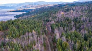 Photo 18: S/W 1/4 IVY ROAD in KAMLOOPS: Eagle Bay Land Only for sale (Shuswap Lake)  : MLS®# 156633