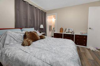 Photo 11: 13327 25 Street in Edmonton: Zone 35 House for sale : MLS®# E4252255